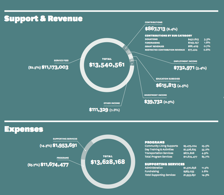 Revenue and Expenses infographic